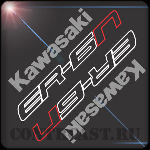 Kawasaki ER-6N 2013 set of stickers