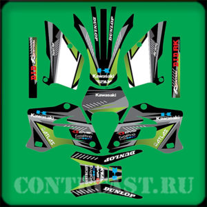 Kawasaki kdx220 sticker set