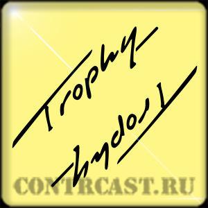 Triumph Trophy set of stickers
