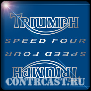Triumph Speed Four 2006 stickers