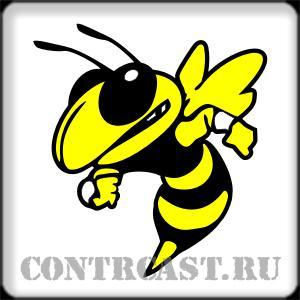 hornet_stickers